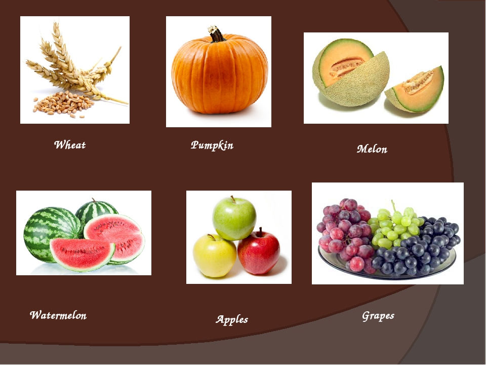Wheat Pumpkin Melon Watermelon Apples Grapes