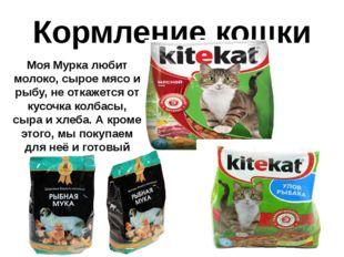 Кормление кошки Моя Мурка любит молоко, сырое мясо и рыбу, не откажется от ку