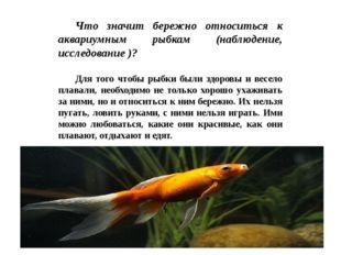 Что значит бережно относиться к аквариумным рыбкам (наблюдение, исследование