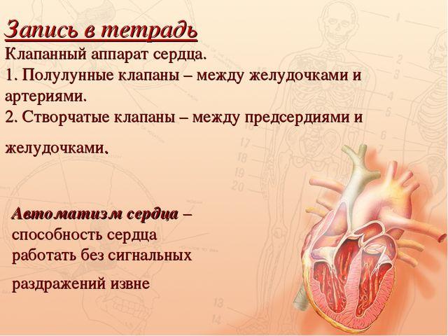 Запись в тетрадь Клапанный аппарат сердца. 1. Полулунные клапаны – между желу...