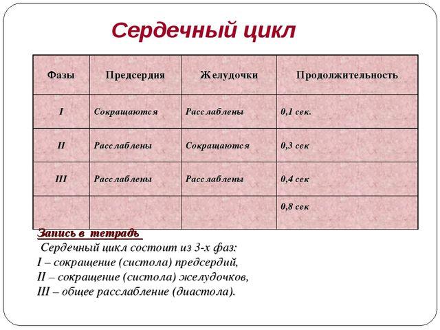Сердечный цикл Запись в тетрадь Сердечный цикл состоит из 3-х фаз: I – сокращ...