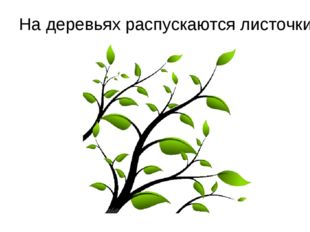 На деревьях распускаются листочки.