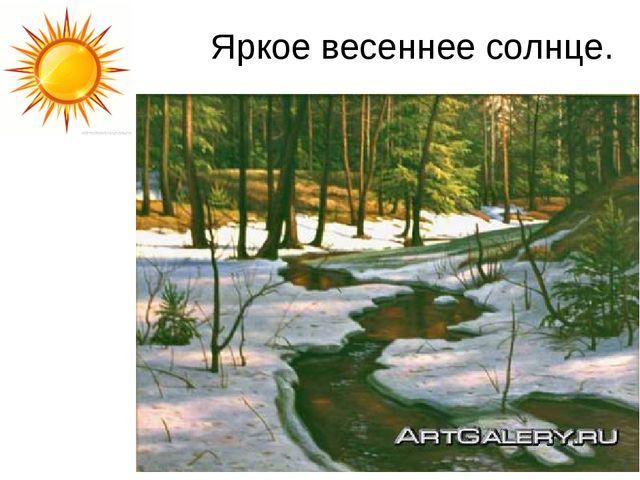 Яркое весеннее солнце.