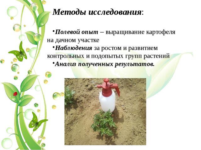 Методы исследования: Полевой опыт – выращивание картофеля на дачном участке Н...