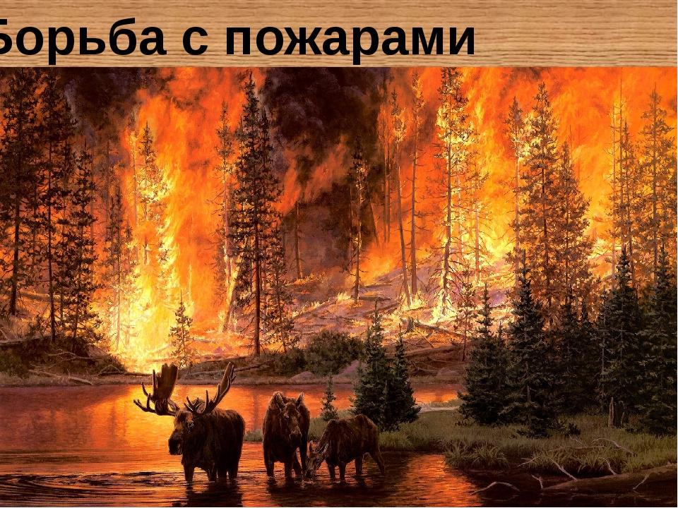 Борьба с пожарами