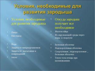 Условия, необходимые для развития зародыша Пища Кислород Вода Защита от микро