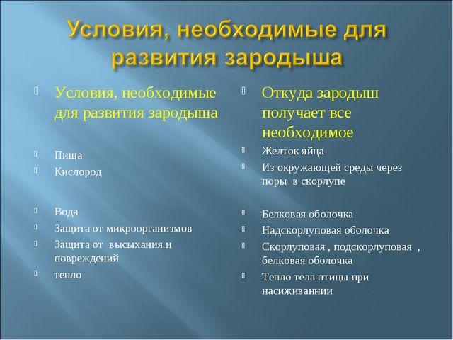 Условия, необходимые для развития зародыша Пища Кислород Вода Защита от микро...