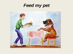Feed my pet