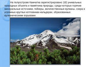 На полуострове Камчатка зарегистрировано 182 уникальных природных объекта и