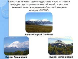 Камчатские вулканы - одно из чудес света и одна из главных природных достопри
