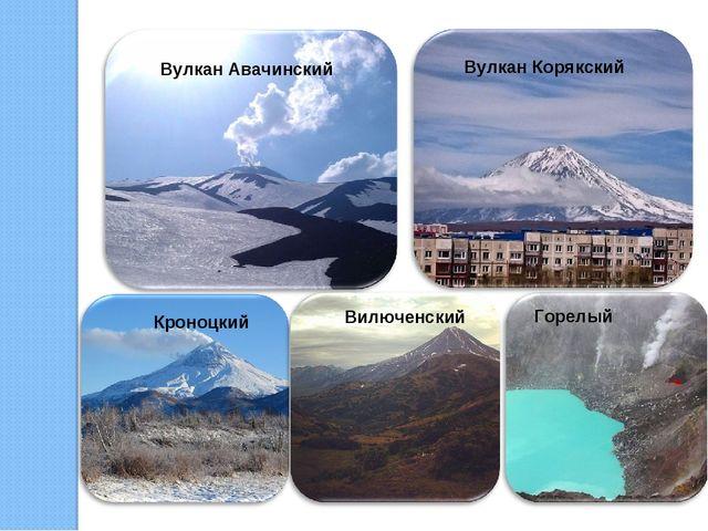 Вулкан Авачинский Вулкан Корякский Кроноцкий Вилюченский Горелый