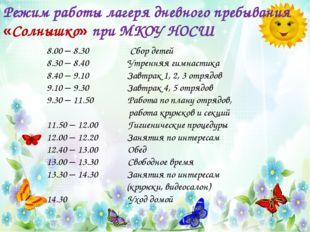 Режим работы лагеря дневного пребывания «Солнышко» при МКОУ НОСШ 8.00 – 8.30