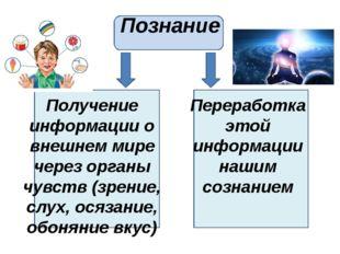 Познание Получение информации о внешнем мире через органы чувств (зрение, сл