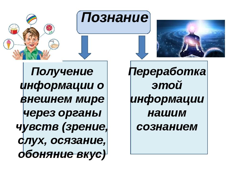Познание Получение информации о внешнем мире через органы чувств (зрение, сл...