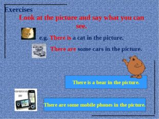 Look at the picture and say what you can see. e.g. There is a cat in the pict