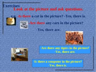 Look at the picture and ask questions. e.g. -Is there a cat in the picture? -