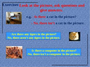 Look at the picture, ask questions and give answers. e.g. - Is there a cat i