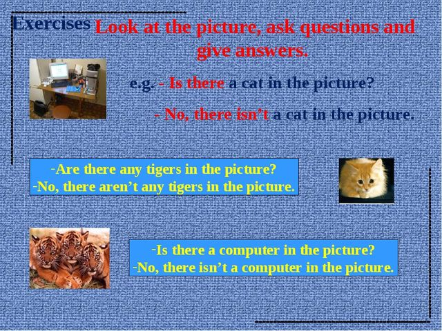 Look at the picture, ask questions and give answers. e.g. - Is there a cat i...