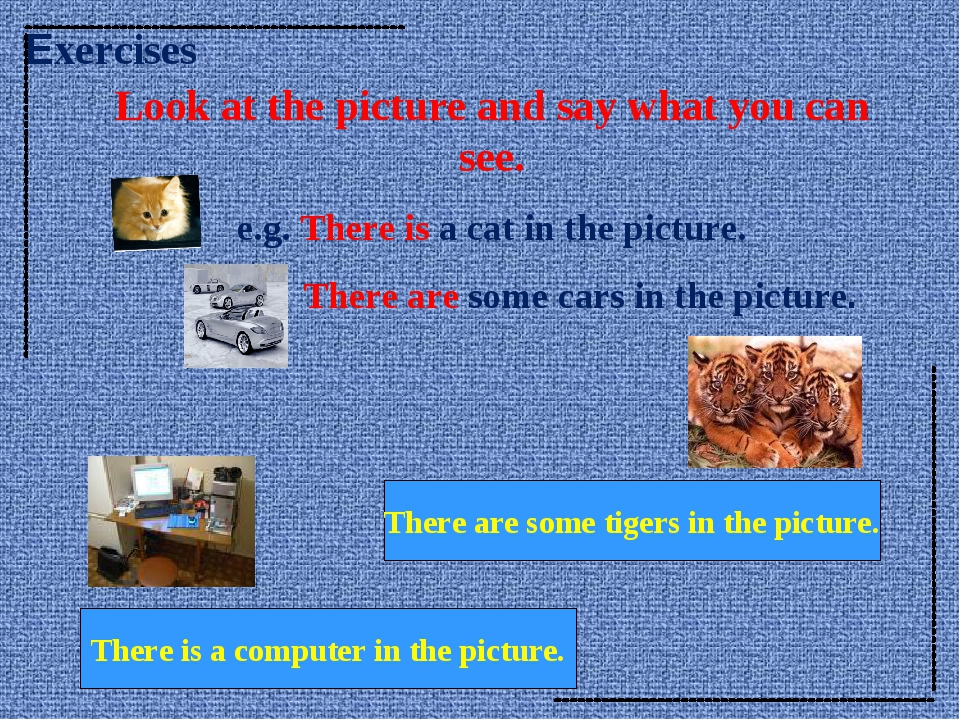 Look at the picture and say what you can see. e.g. There is a cat in the pict...