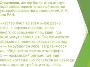 Белла Стриганова,доктор биологических наук, заведующая лабораторией почвенно