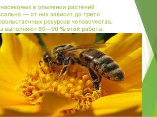 Роль насекомых в опылении растений колоссальна — от них зависит до трети прод