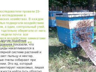 В 2010 г. исследователи провели 23-недельное исследование в пчеловодческих хо