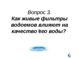 Конкурс№3 «Проблема - решение» Проблема №2. Вы спешите на экологическую конфе