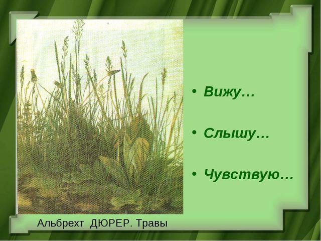 Альбрехт ДЮРЕР. Травы Вижу… Слышу… Чувствую…
