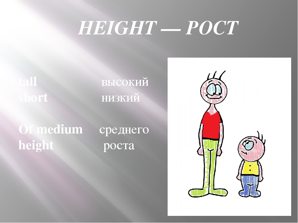 HEIGHT — РОСТ tall высокий short низкий Of medium среднего height роста