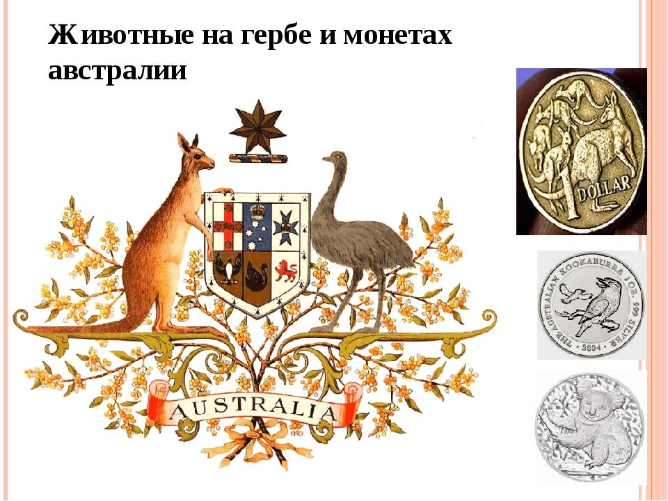 Животные на гербе и монетах австралии
