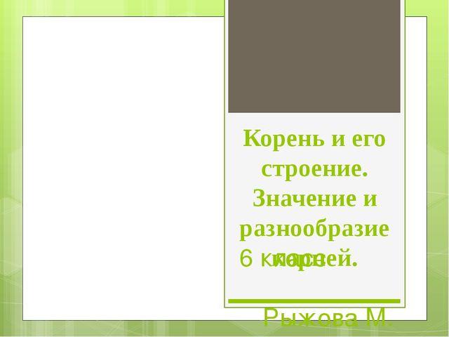 Корень и его строение. Значение и разнообразие корней. 6 класс Рыжова М. И.