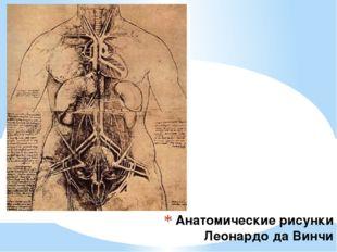 Анатомические рисунки Леонардо да Винчи