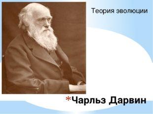 Чарльз Дарвин Теория эволюции