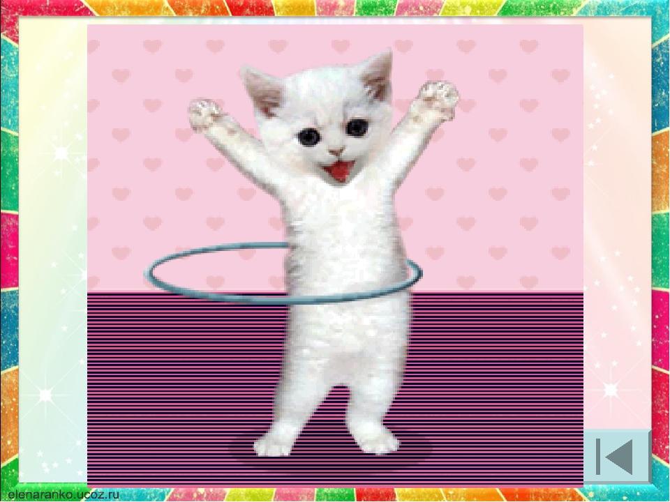 Позитивная, двигающаяся открытка котик