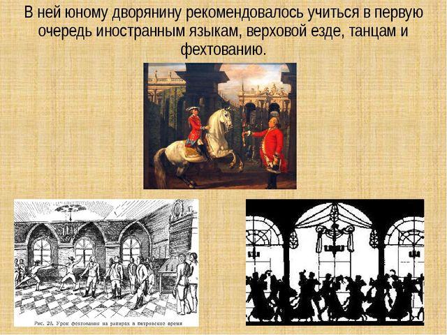 В ней юному дворянину рекомендовалось учиться в первую очередь иностранным яз...