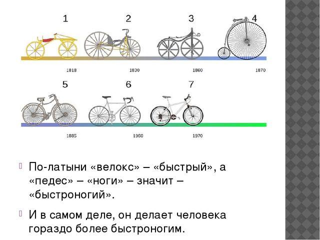 По-латыни «велокс» – «быстрый», а «педес» – «ноги» – значит – «быстроногий»....