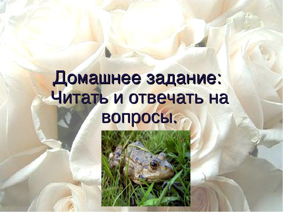 сказочного поздравление жабе и розе союз квн
