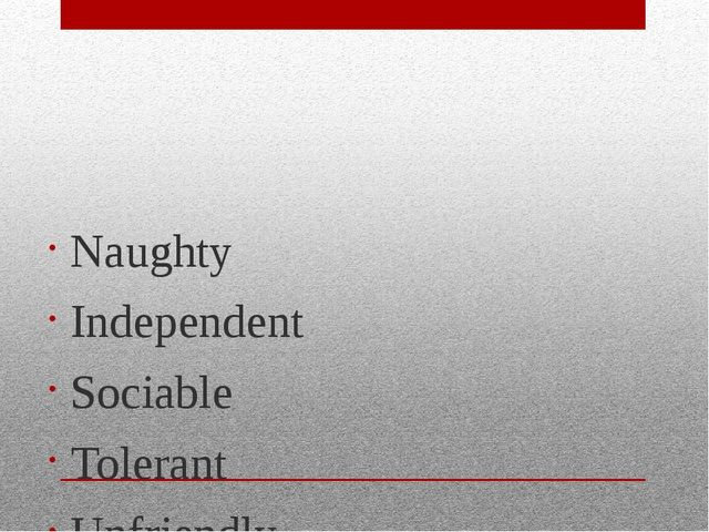 Naughty Independent Sociable Tolerant Unfriendly Creative Curious