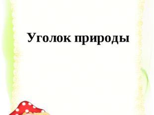Автор: Зобнина Ирина Евгеньевна, учитель начальных классов школы-лицея № 101