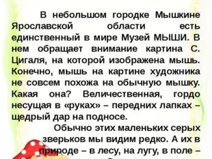 В небольшом городке Мышкине Ярославской области есть единственный в мире Муз