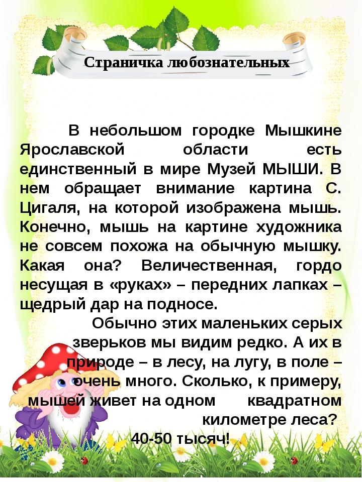 В небольшом городке Мышкине Ярославской области есть единственный в мире Муз...