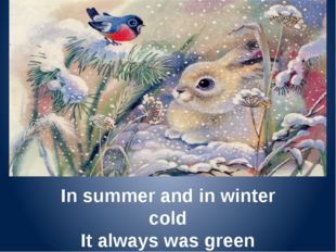 In summer and in winter cold It always was green