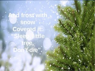 "And frost with snow Covered it: ""Sleep, little tree, Don't die""."