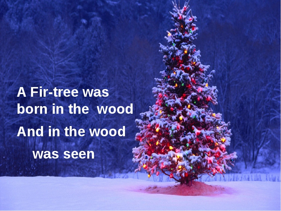 A Fir-tree was born in the wood And in the wood was seen