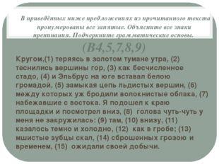 В приведённых ниже предложениях из прочитанного текста пронумерованы все зап