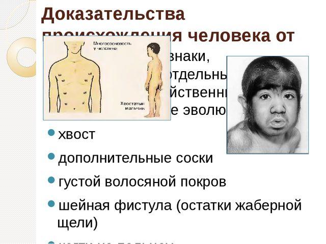 Доказательства происхождения человека от животных Атавизмы – признаки, появля...