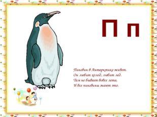 П п Пингвин в Антарктике живет. Он любит холод, любит лед. Там не бывает вовс