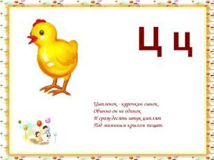 Ц ц Цыпленок - курочкин сынок. Обычно он не одинок И сразу десять штук цыплят