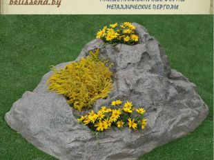 Belissena Design