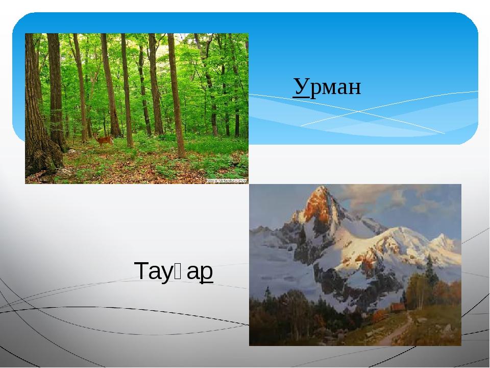 Урман Тауҙар